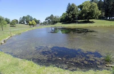 Work slated for Lake Shore Park's upper pond