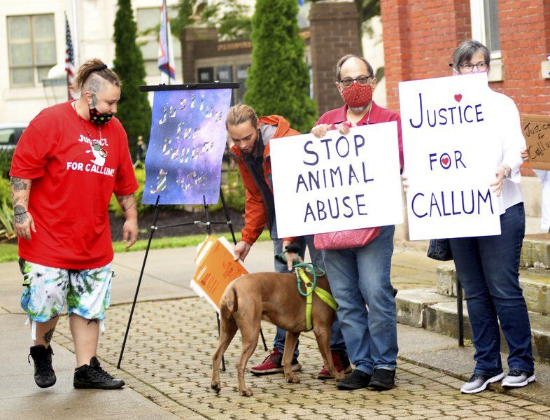 Peaceful demonstrators gather at Conneaut Municipal Court to protest animal cruelty More than 60 people seek justice for Callum