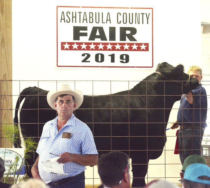 Hundreds of 4-Hers participate in the  Ashtabula County Fair Market Animal Sale