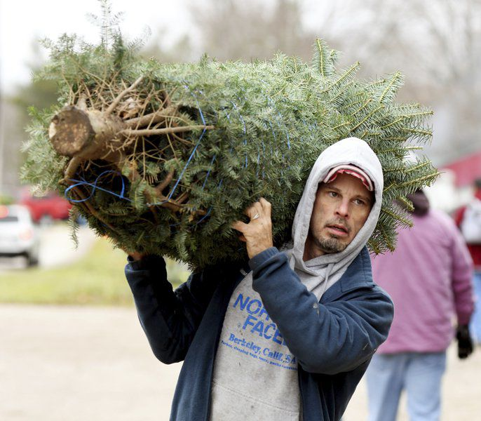 Ashtabula County tree farms ready for Christmas