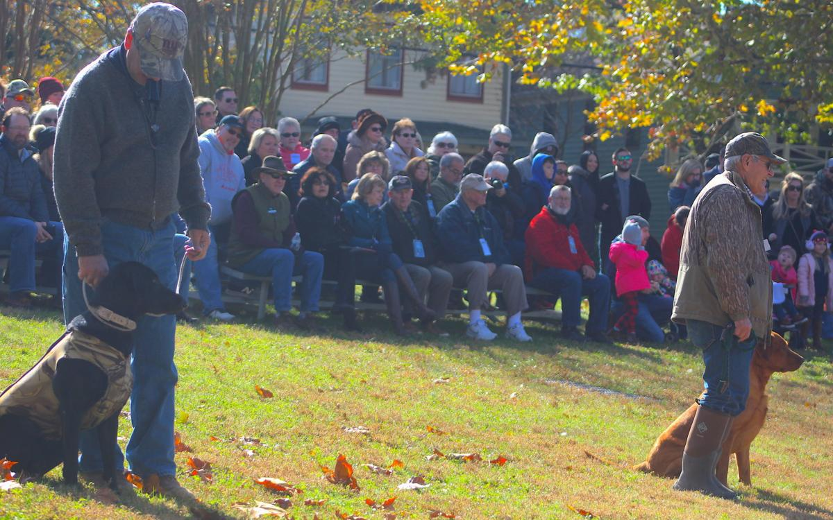 Retriever demonstrations attract 200 people Saturday