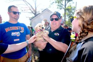 Hogan spends big on campaign ads; Jealous holds off