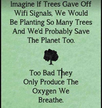 Sustainable QA