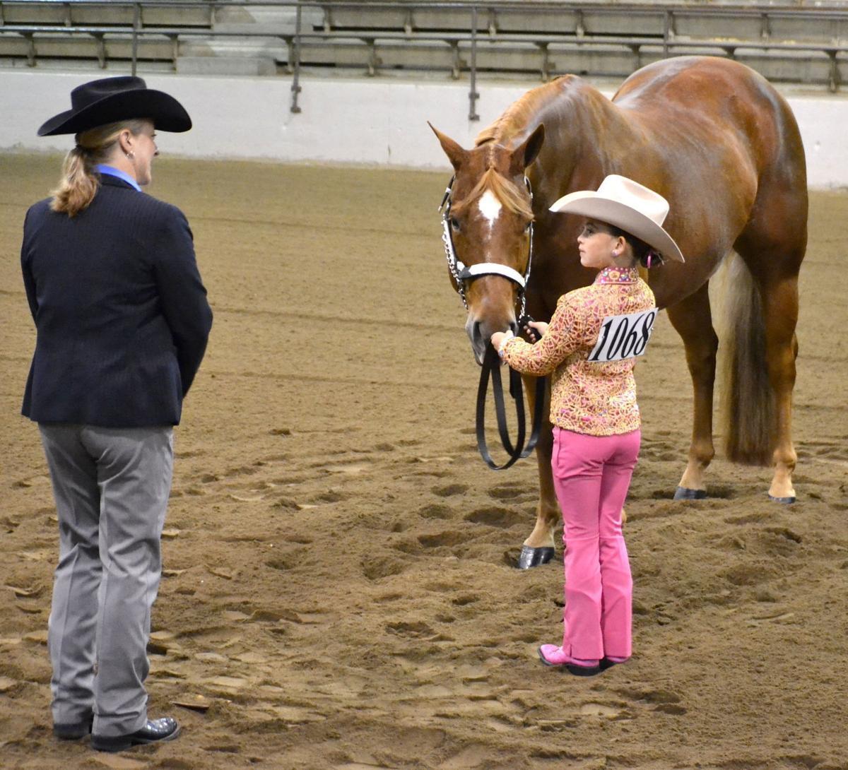 All-American Qtr Horse Congress