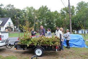 Volunteers prep Bay City tree plantings
