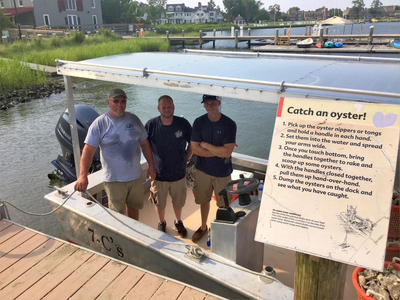 Living oyster bed created at CBMM