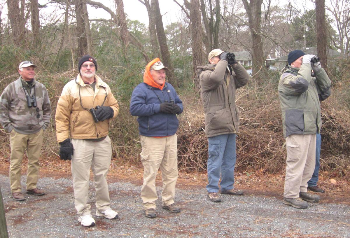 Local group goes on rare bird search