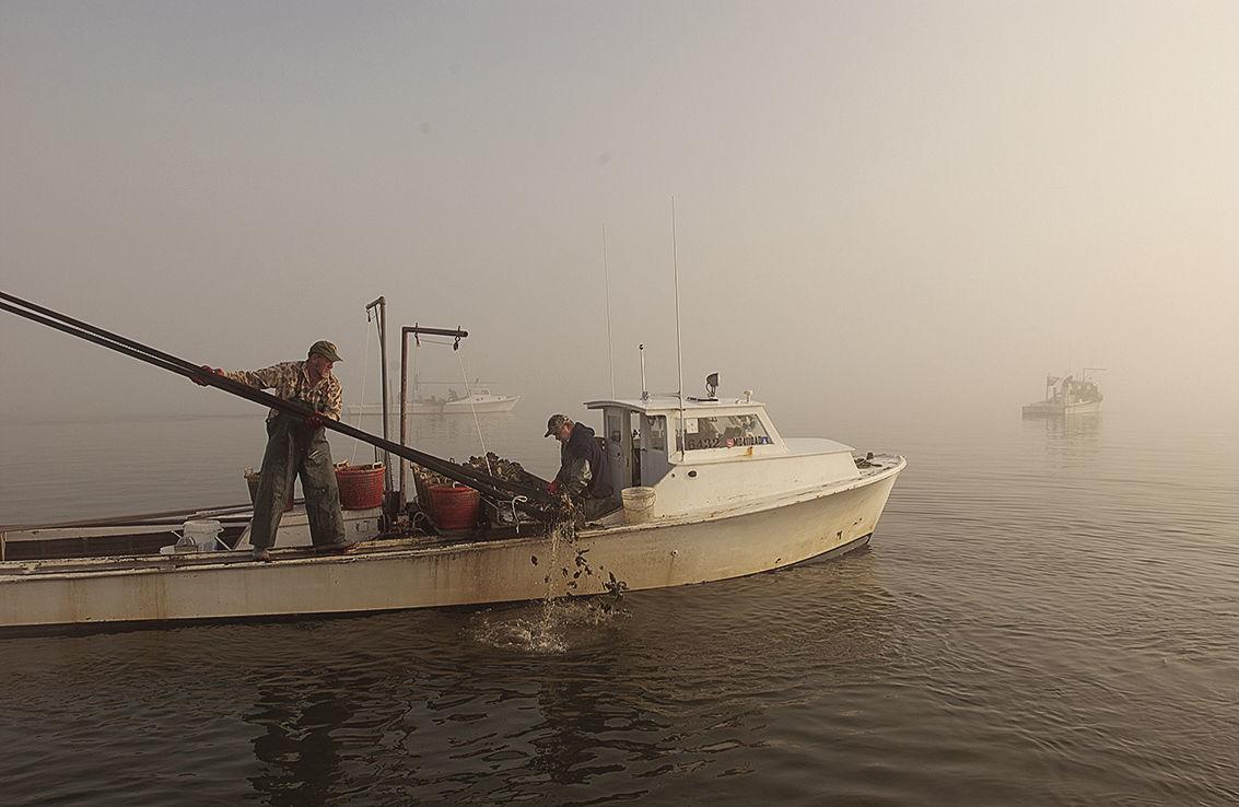 Coronavirus hinders Bay cleanup efforts, seafood industry