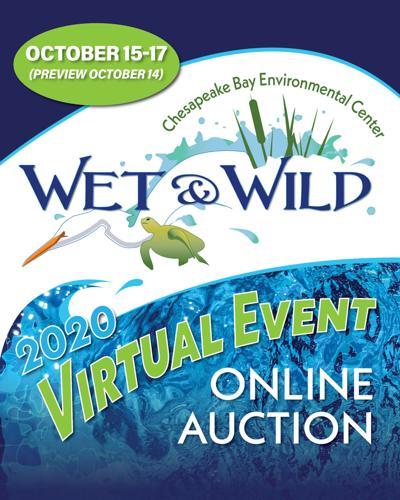CBEC Wet & Wild Auction