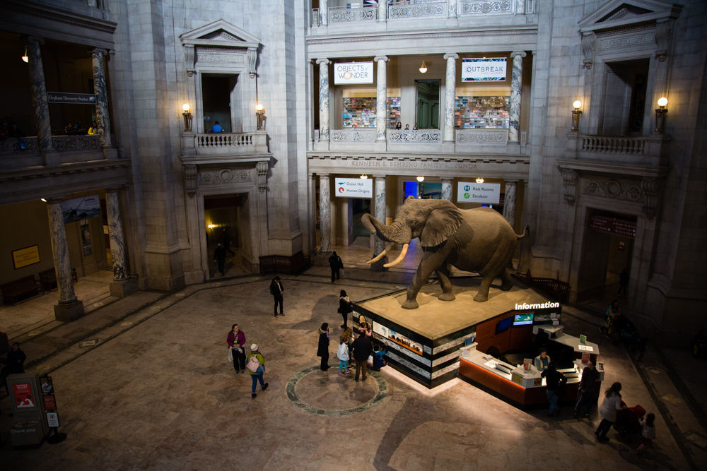 Smithsonian's chief says more museums must wait, maintenance is top priority