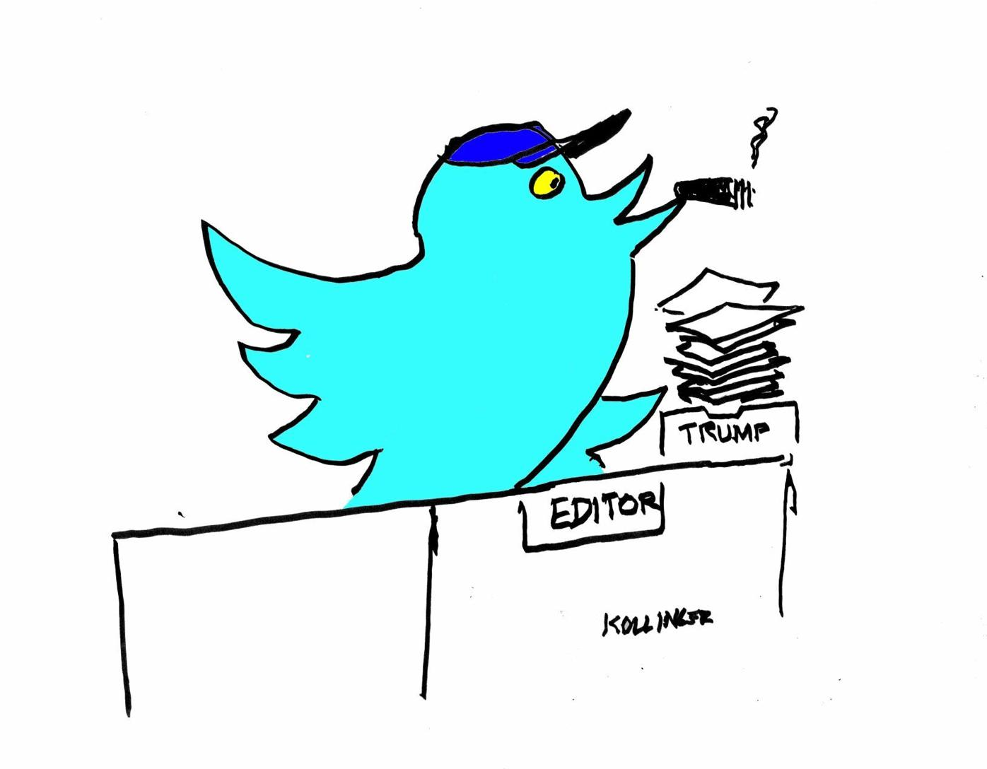 Editorial Cartoon 11/17