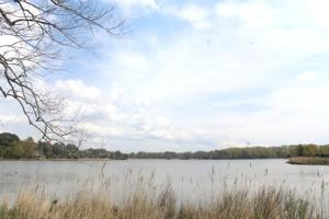 Judge orders state to hold another public hearing on Lakeside permit