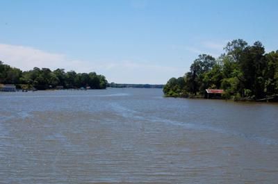 Overlooking Peachblossom Creek