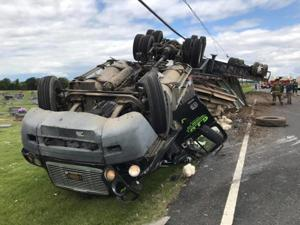 Chicken tractor-trailer crashes, rolls