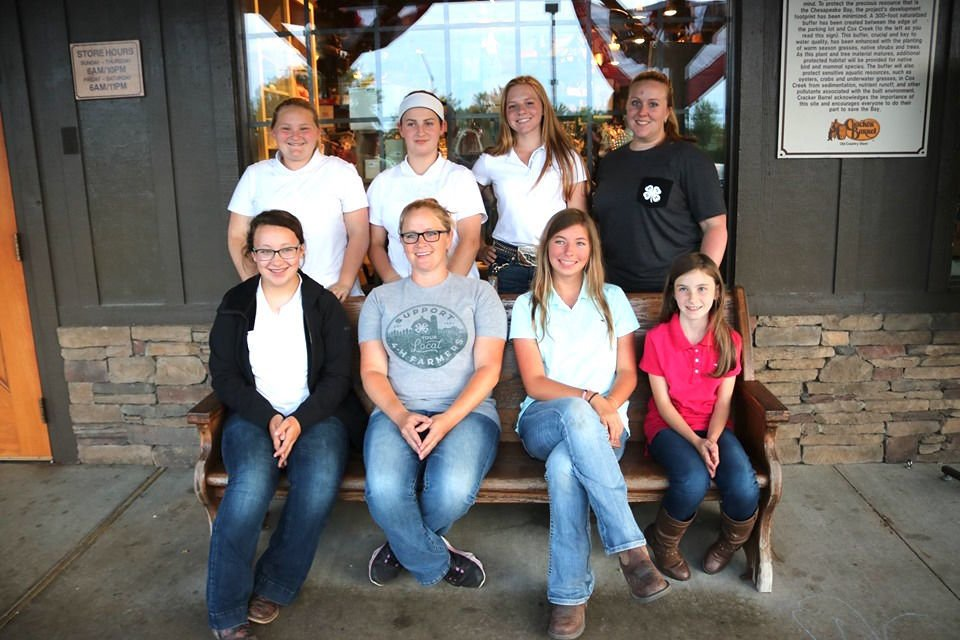 4-H horse teams excel at state competition