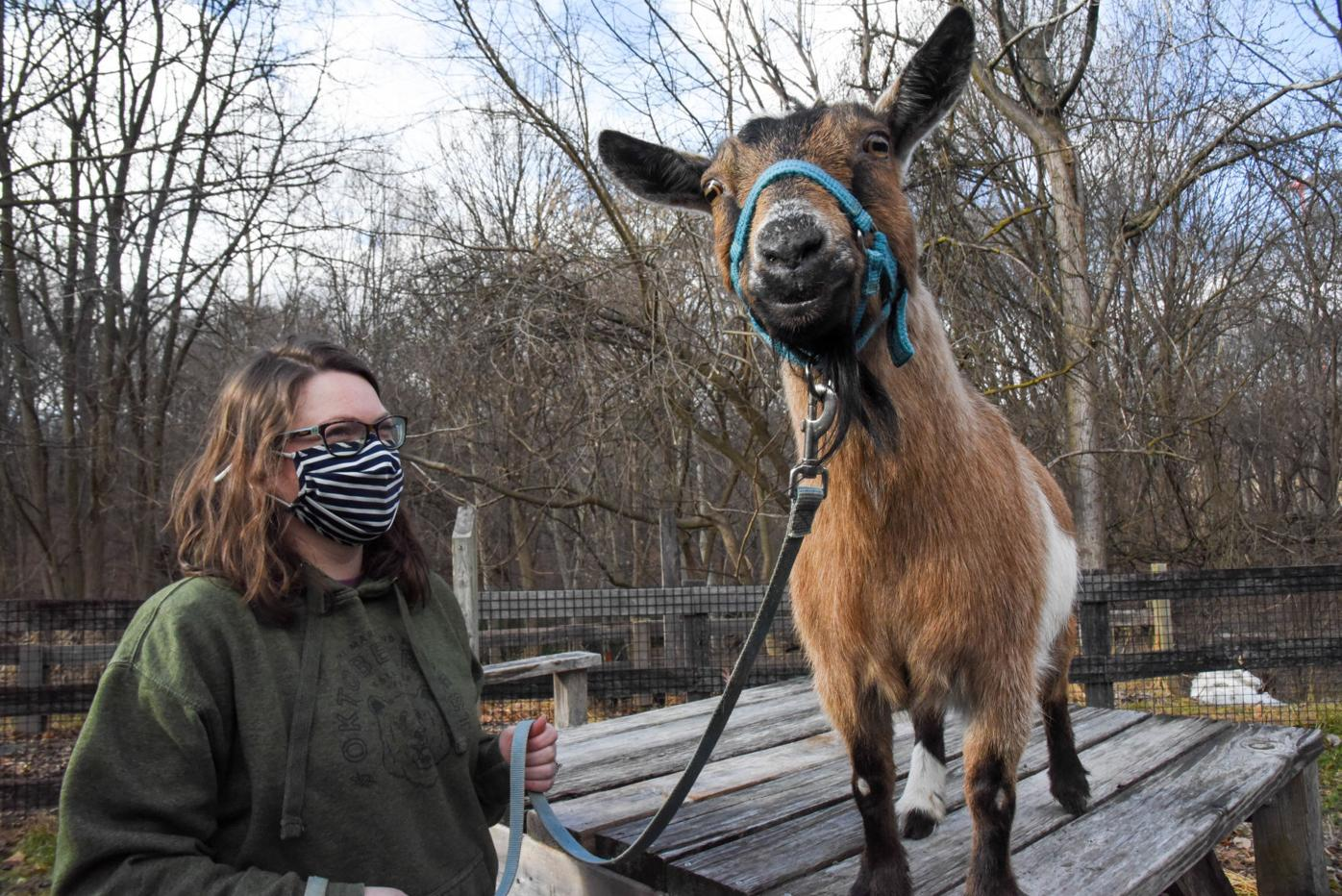 New experiences for 2021 at The Maryland Zoo