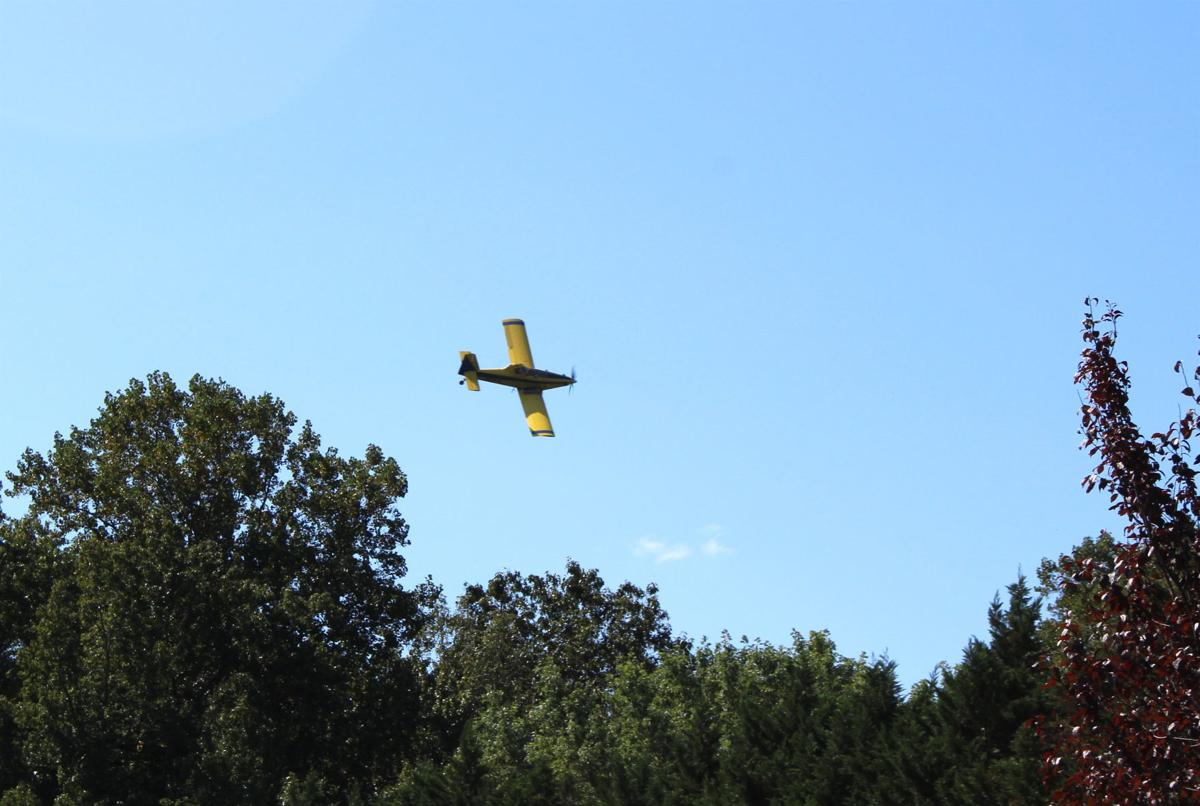 Aerial seeding: Local aviation and ag experts allay fears of Talbot citizens