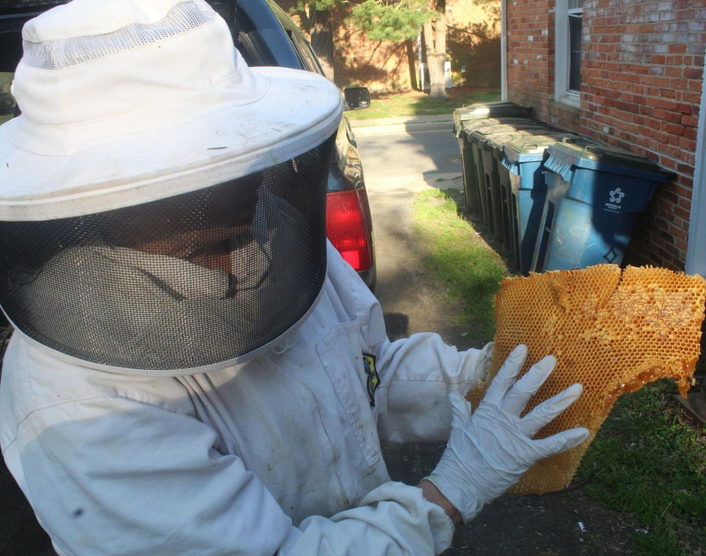 Beekeeper suit and hive piece