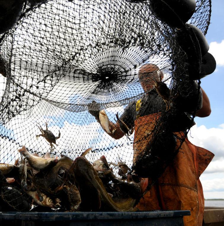 Crabbing season