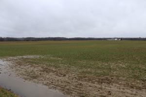 Ground saturation affects planting season on Mid-Shore