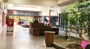 Designated sales tax goes back into mall operation