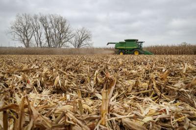Gloomy farm crop teaser