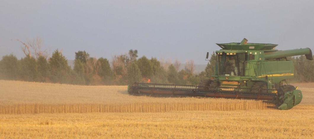 Crops damaged by Friday's storm