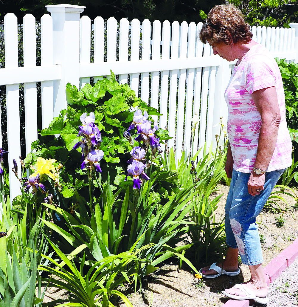 Gering resident Peg Nees preparing for Theatre West Garden Walk
