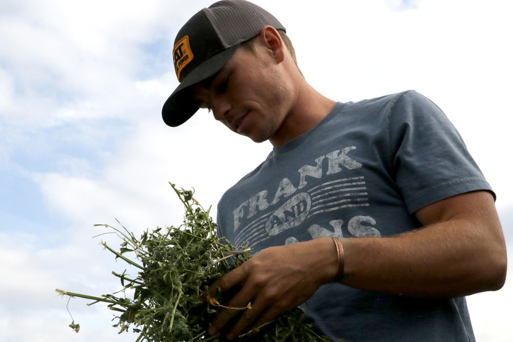 Nebraska sees a rising interest in organic ag