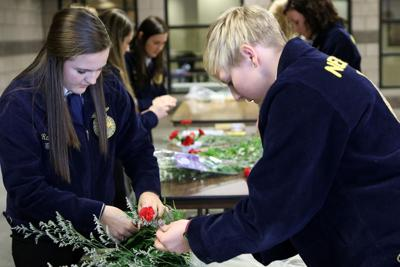 FFA students from 18 area schools compete in districts