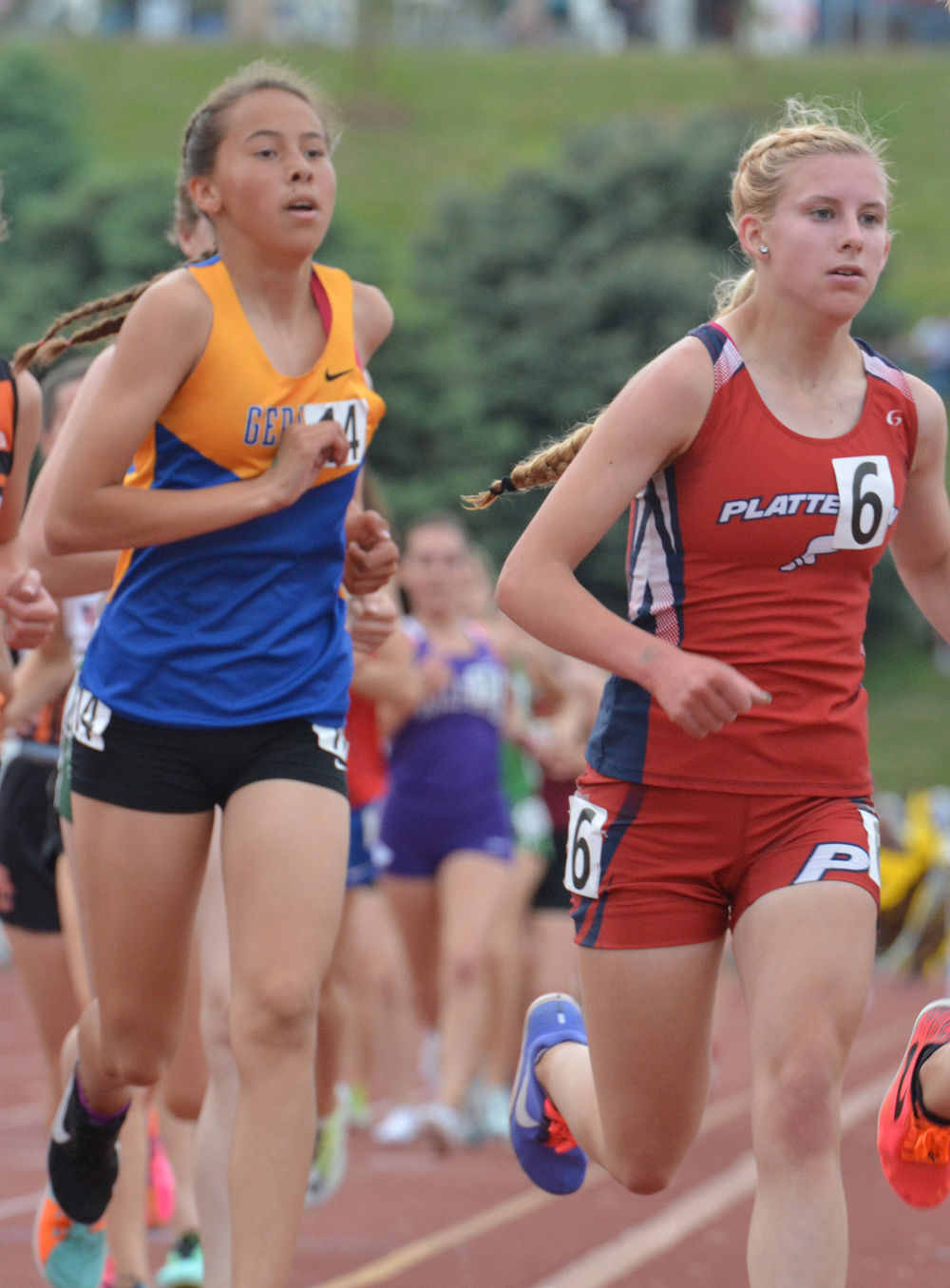 Dawgs earn at state