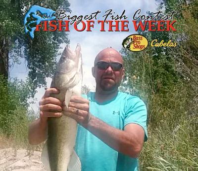 BIGGEST FISH CONTEST: Josh Wickhham lands 28-inch walleye in the North Platte River
