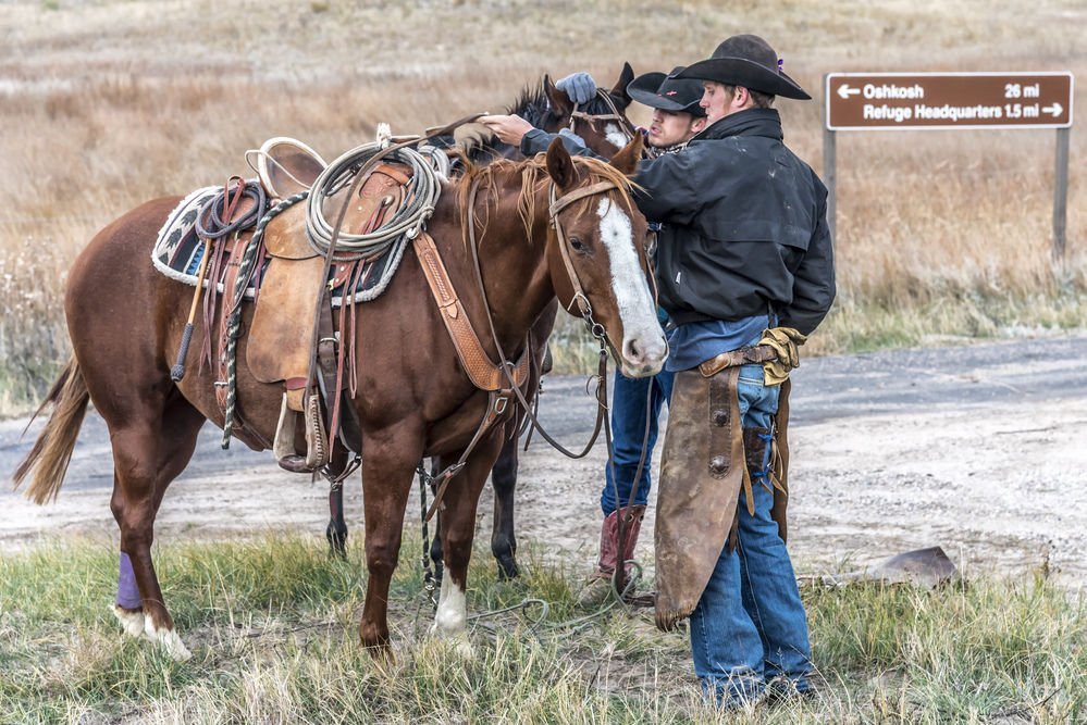 Nebraska College of Technical Agriculture students round up range cattle on horseback