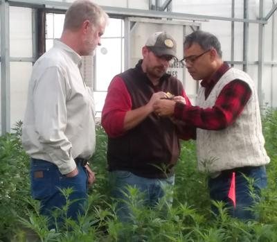 New hemp farm plans open house