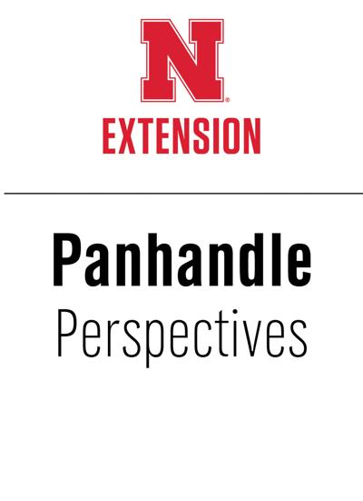 PANHANDLE PERSPECTIVES: Will feeding silage to lactating cows give my calves scours?