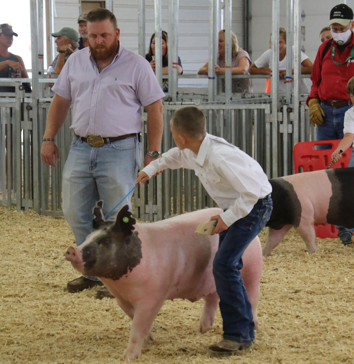 Collegiate livestock coach commends the youth
