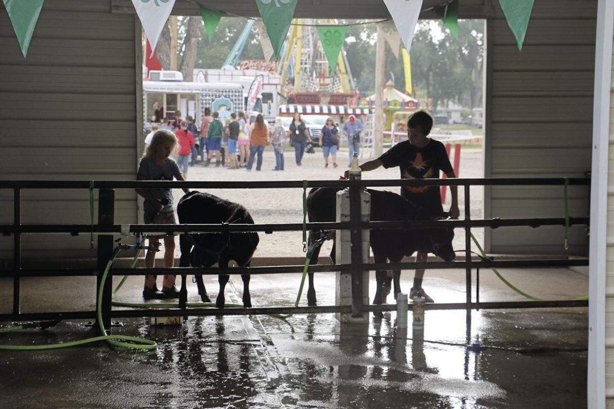 PHOTOS: SB County Fair 8-2