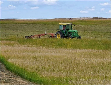 90 percent of winter wheat has been harvested