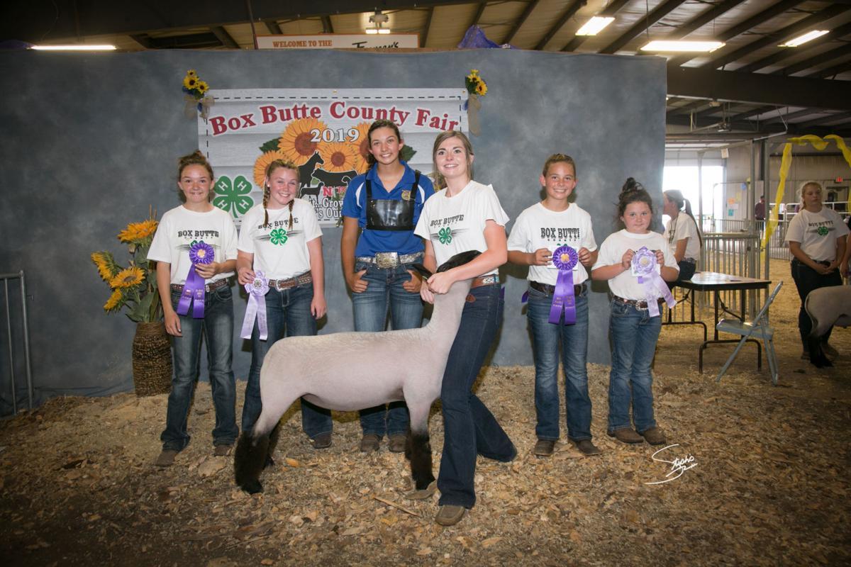 Box Butte County Fair Results