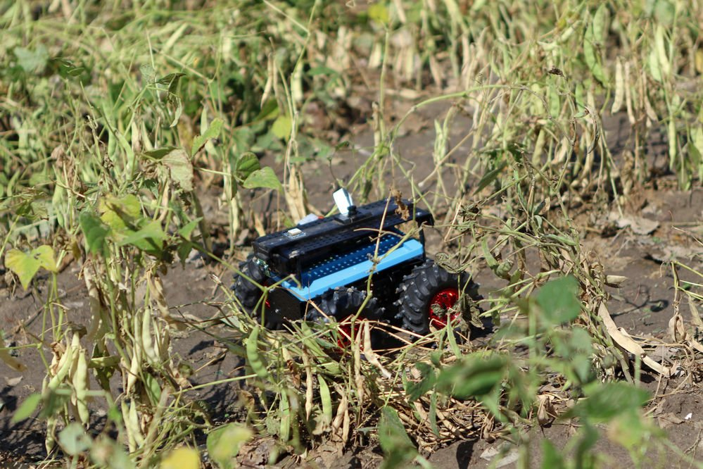 Using 'Rowbots' on the farm: Research highlighted at technology tour