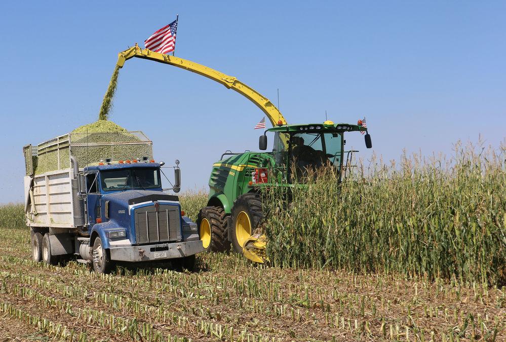 Harvest season begins