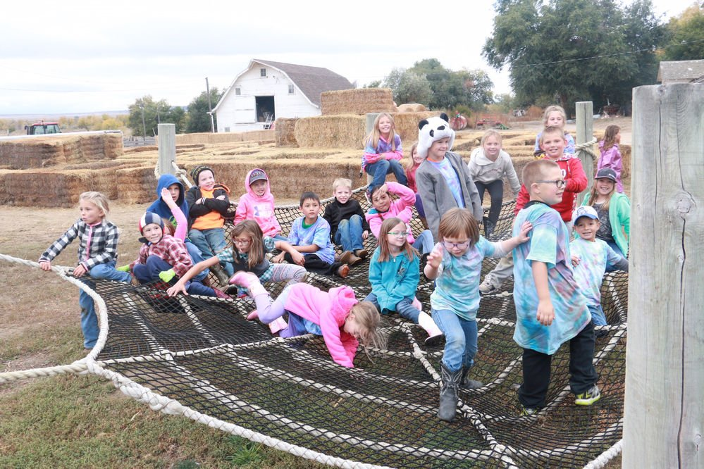 Ellis Harvest Home gives guests the chance to pick a pumpkin and get a taste of farm life