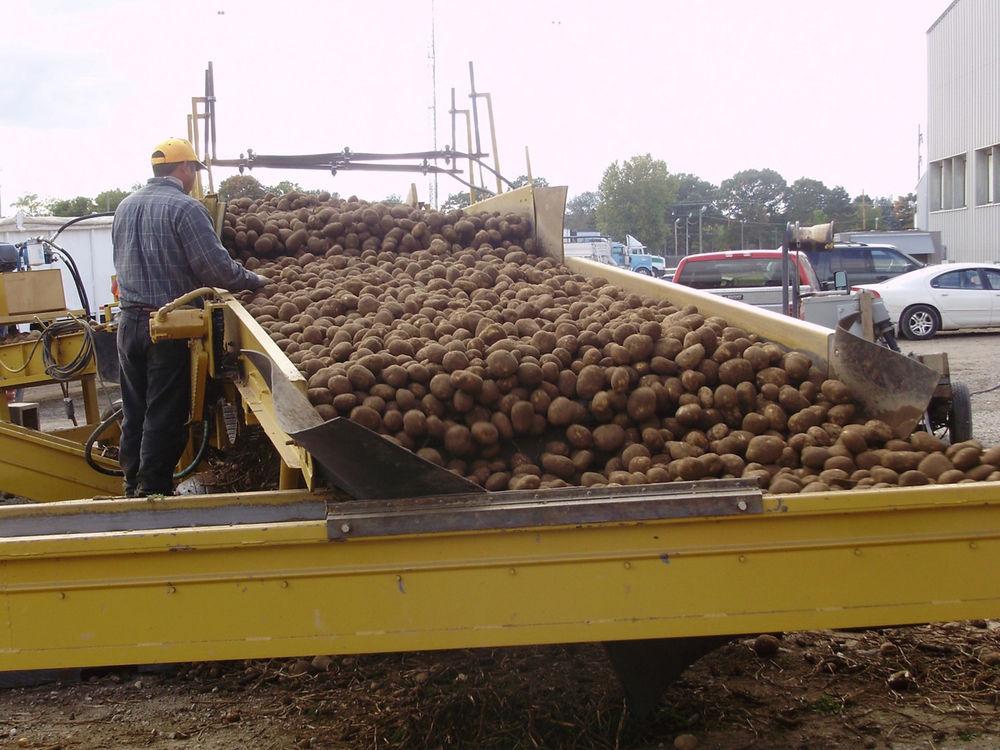 Michigan potato company to expand, adding plant in Lisco
