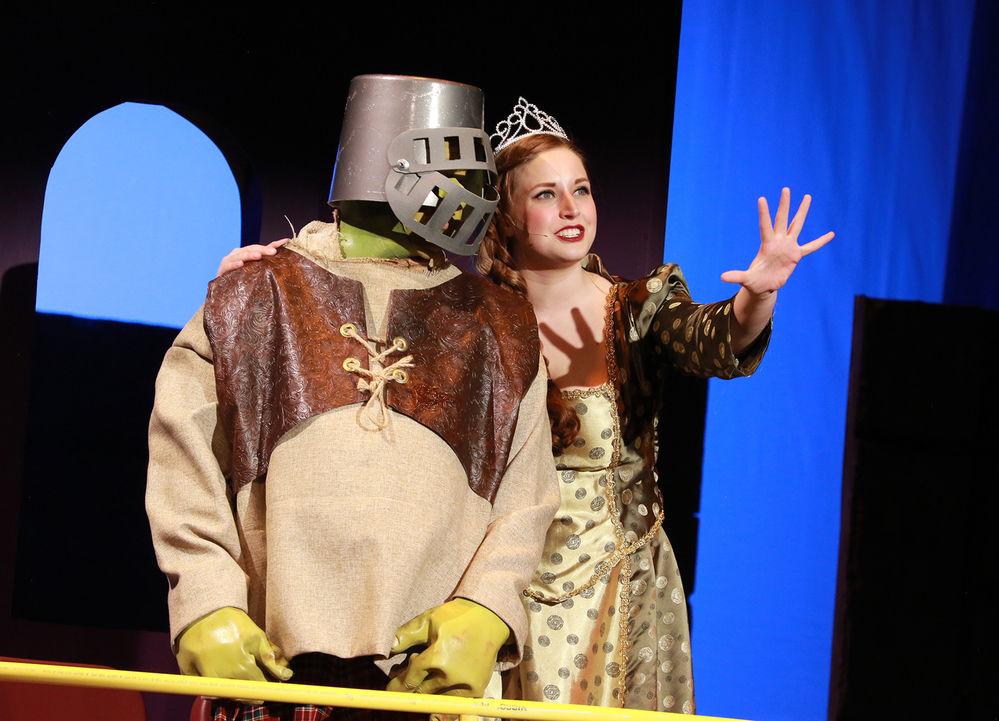 Ogre-whelming journey: Shrek journeys to reclaim swamp, finds love