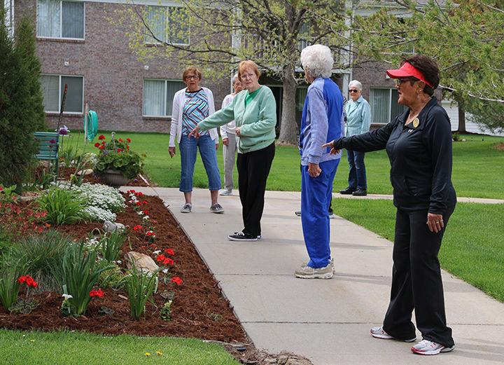 Seniors get moving in walking program