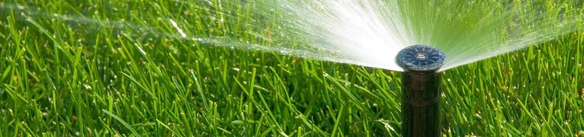 Lawn Clean Up Gering Ne