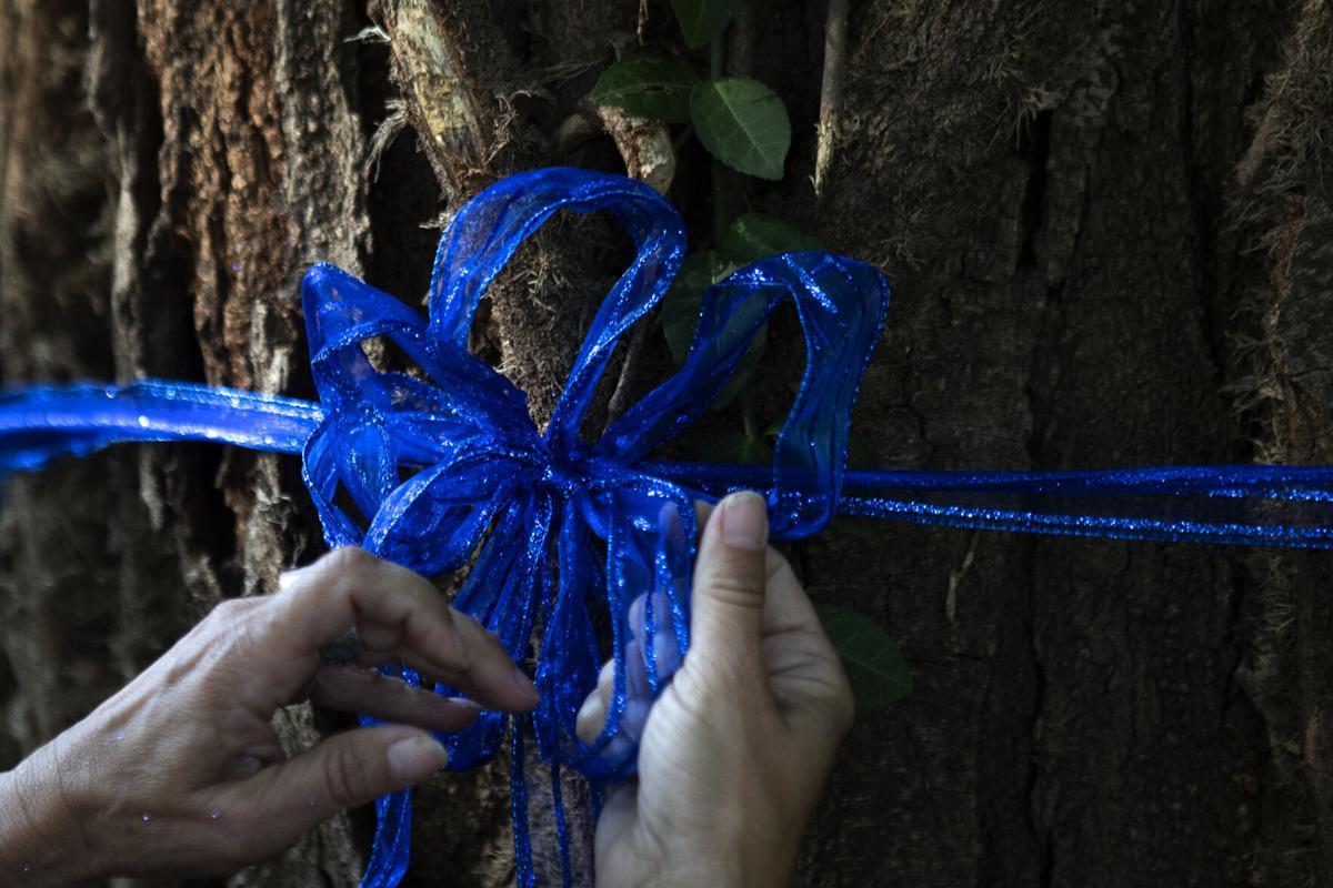 Mario Herrera ribbon 8.31