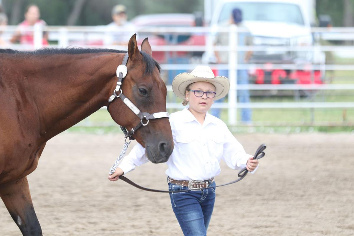 PHOTOS: Scotts Bluff County Horse Show