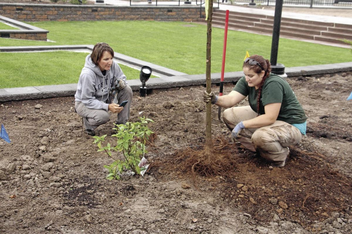 pHOTOS: Planting at Gering Civic Plaza