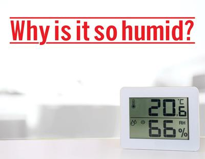 WEATHER Why is it so humid? Region is more humid than normal, National Weather Service explains why?